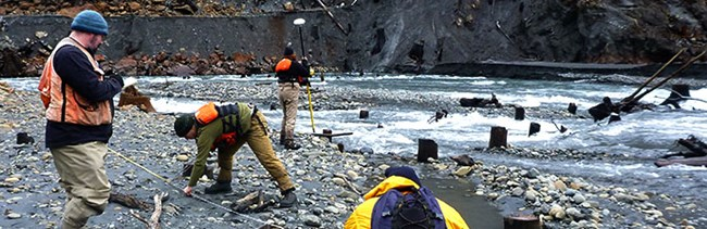 Four geomorphologists study sediment in the Elwha River.