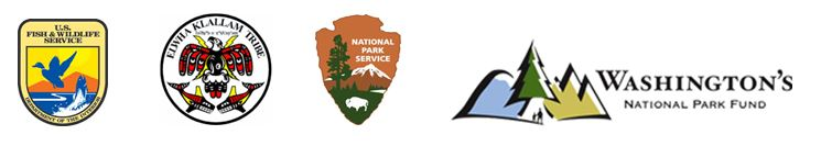 Logos of the U.S. Forest Service, Lower Elwha Klallam Tribe, National Park Service, and Wachington's National Park Fund.
