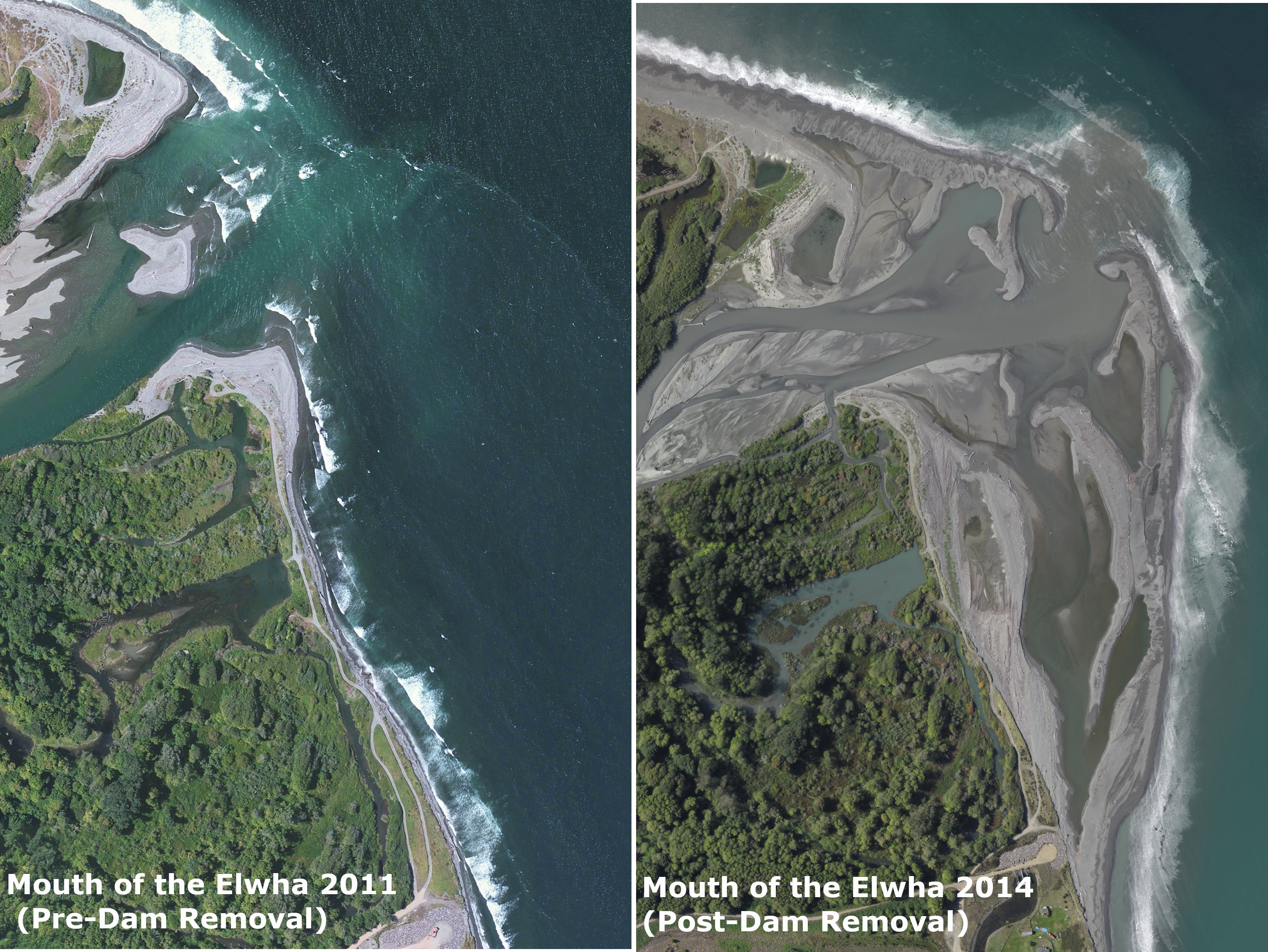 Change in the mouth of the Elwha River following dam removal.