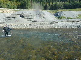 A fisheries biologist points to a Chinook redd observed above Glines Canyon Dam September 15.