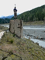A scientist stands on a stump along a riverbank holding a piece of equipment.