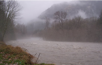 Elwha River in flood stage