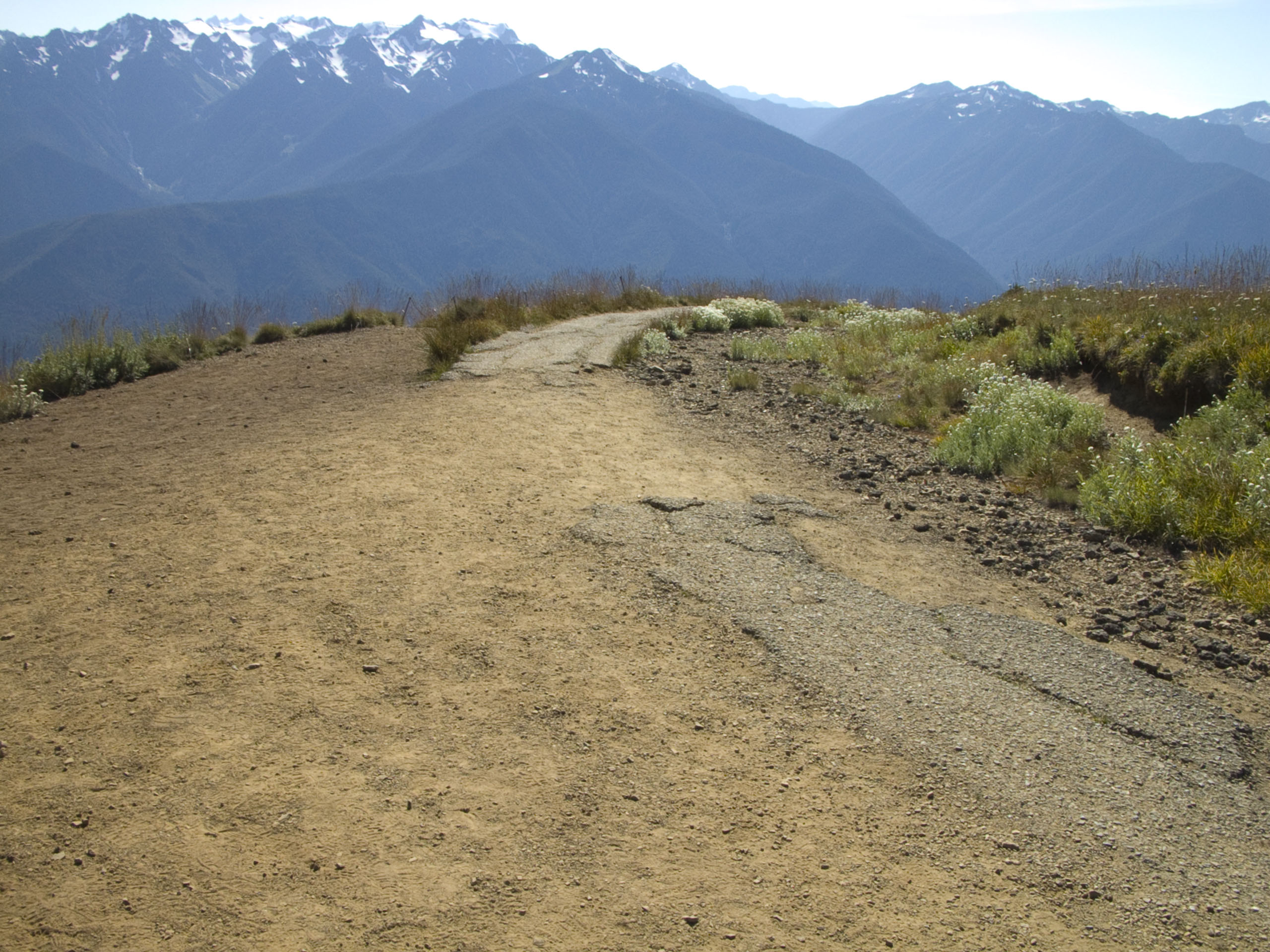 Damaged pavement and off-trail impacts on Hurricane Hill Trail.