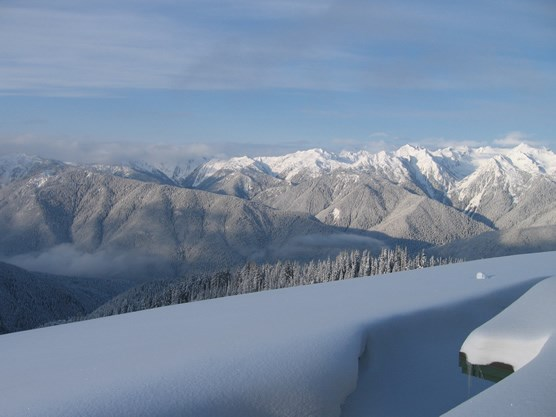 view from Hurricane Ridge webcam