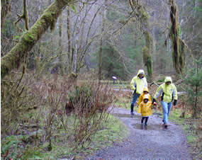 family in raincoats walking through woods