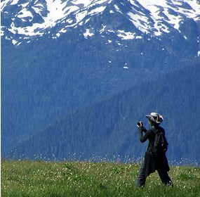 person taking picture in mountain meadow