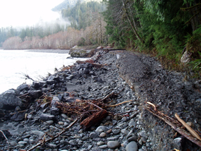 damage to Quinault South Shore Road