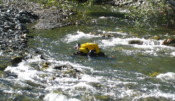 person wearing snorkel gear in shallow river