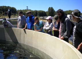 A group of high school students looking into a holding tank at the Lower Elwha Klallam Tribe fish hatchery.