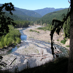 Elwha River near Humes Ranch