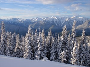 Hurricane Ridge in Winter