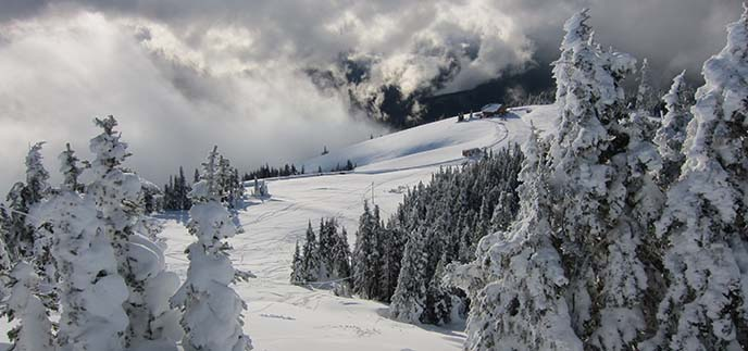 hurricane ridge in winter olympic national park u s. Black Bedroom Furniture Sets. Home Design Ideas