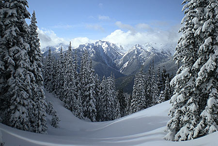 Deep snow covers Olympic Mountains in winter.