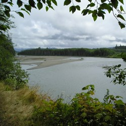 Hoh River from Oil City Trail