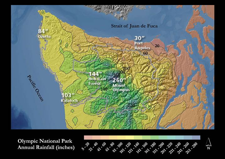 Weather Olympic National Park US National Park Service - Map of weather patterns in the us