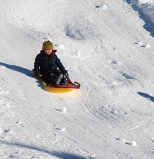 Sledder glides down hill at Hurricane Ridge.