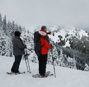Snow shoers enjoy vista views at Hurricane Ridge.