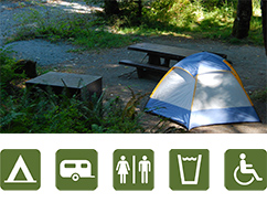 Tents and People in Sol Duc Campground