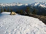Tent in the Olympic Wilderness
