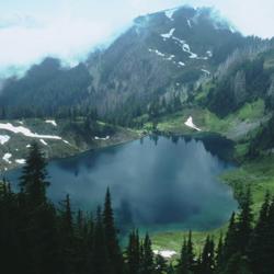 Hoh Lake Trail Olympic National Park U S National Park