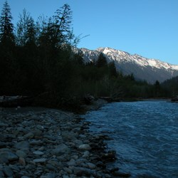 Hoh Rainforest and River