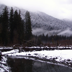 The Hoh River in Winter