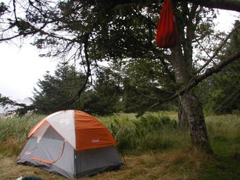 Ozette Loop Olympic National Park U S National Park