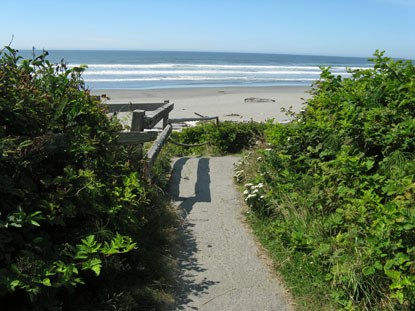 Trail leading to Kalaloch Beach