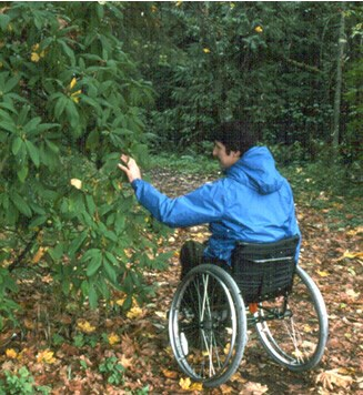 man in wheelchair along a wooded trail
