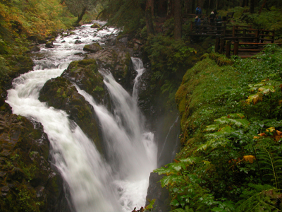 Sol Duc River Trail Olympic National Park U S National