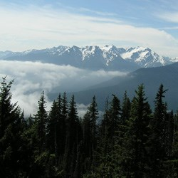 View from Happy Lake Ridge Near Elwha