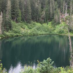 Wagonwheel Lake Trail Olympic National Park U S