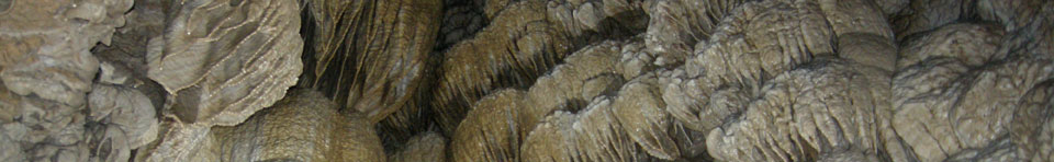 Photo of the vast drapery formations inside Oregon Caves National Monument.