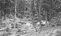 Government Camp, Oregon Caves late 1800s
