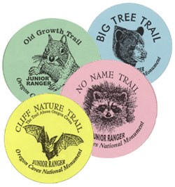 Collect all four Junior Ranger trail buttons!