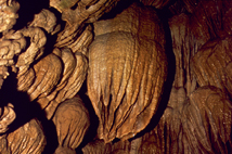 Speleothems, known as drapery at Paradise Lost in Oregon Caves.
