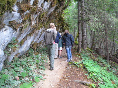 Hikers explore the Old-Growth Forest