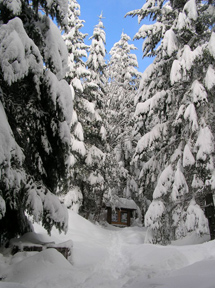 Winter weather occurs throughout fall, winter, and spring at Oregon Caves!