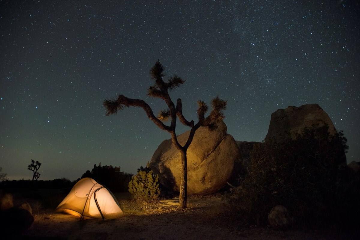 A star-filled night sky arches over a campground tent at Joshua Tree National Park.