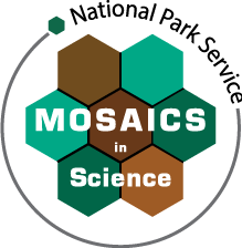 Mosaics in Science Logo