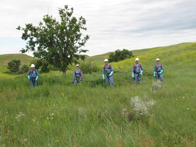 Men and women dressed in protective suites for working in the field