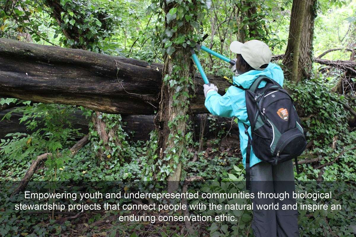 "A girl safely trims English ivy from a tree, text across the bottom reading ""Empowering youth and underrepresented communities through biological stewardship projects that connect people with the natural world & inspire an enduring conservation ethic""."