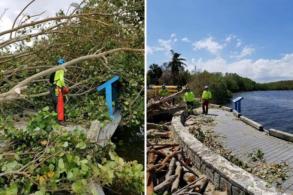 Side-by-side photos showing trees laying along a board walk in one and the cleared boardwalk in the other