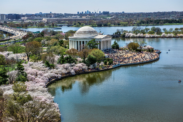 Visitors at the Thomas Jefferson Memorial during the Cherry Blossom Festival.
