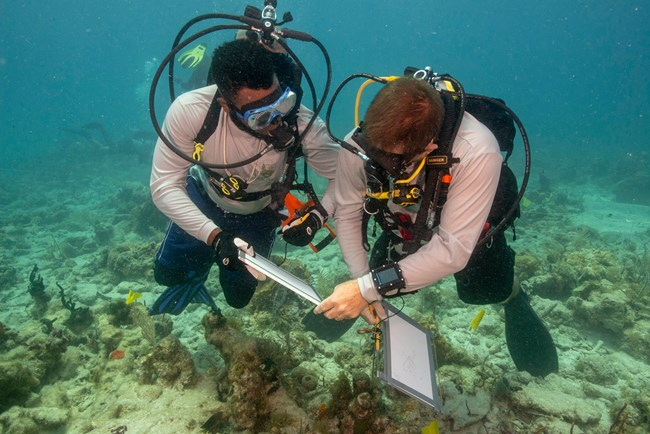 SEAC divers holding clipboards while underwater