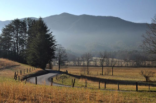A roadway in Great Smoky Mountains National Park. NPS photo by J Bennett.