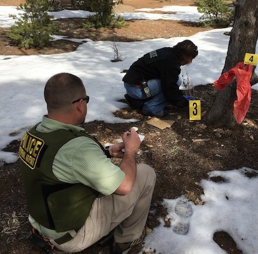 Detailers, Interns, and US Park Rangers work closely with ISB Special Agents to advance NPS criminal investigation skills.