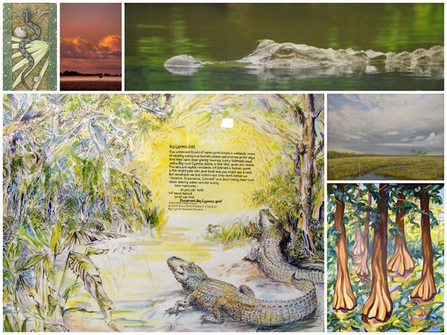 Fine arts collection on exhibit at Big Cypress National Preserve