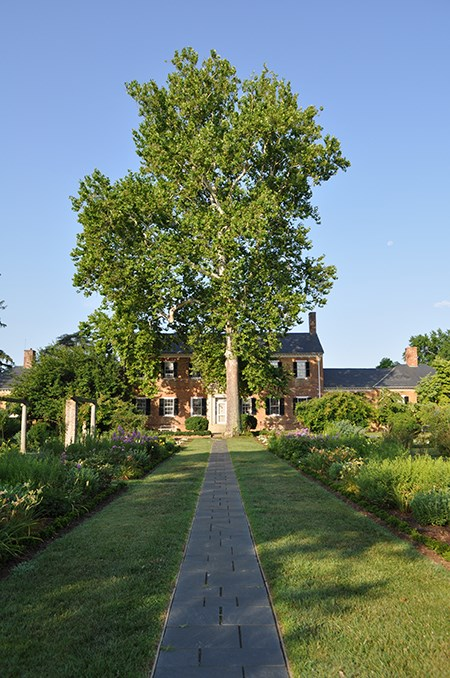 A straight path of symmetrical stone pavers leads between grass and formal gardens to a two-story brick house, shaded by a large tree.