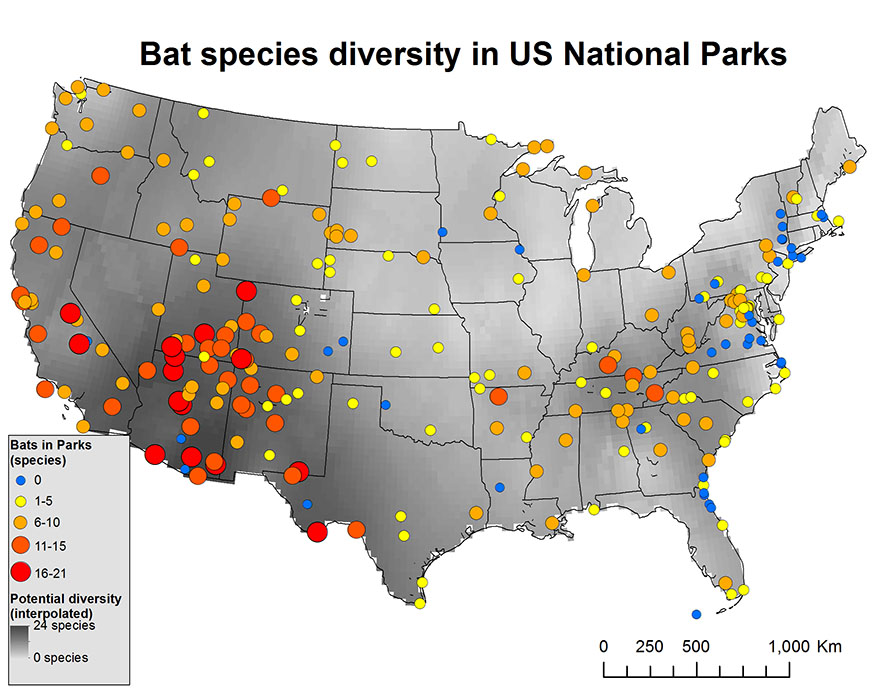 Bats In National Parks More Diverse More At Risk Than Previously - Us map showing national parks
